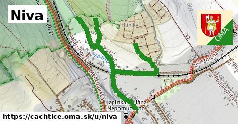 ilustrácia k Niva, Čachtice - 1,46km