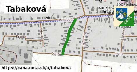 ilustrácia k Tabaková, Čaňa - 209m