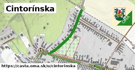 ilustrácia k Cintorínska, Častá - 310m