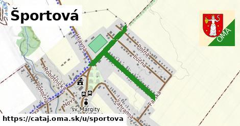 ilustračný obrázok k Športová, Čataj