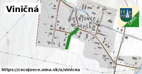 ilustrácia k Viničná, Čečejovce - 130m