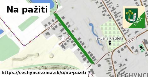 ilustrácia k Na pažiti, Čechynce - 324m
