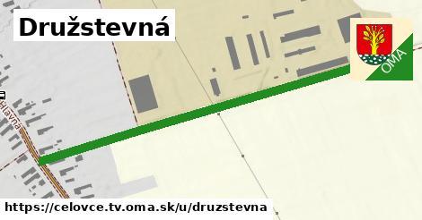 ilustrácia k Družstevná, Čeľovce, okres TV - 633m