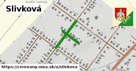 ilustrácia k Slivková, Čereňany - 306m