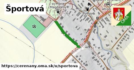 ilustrácia k Športová, Čereňany - 197m