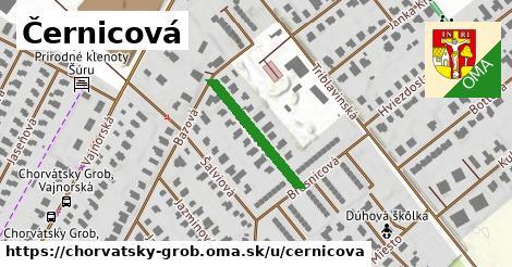 ilustrácia k Černicová, Chorvátsky Grob - 206m