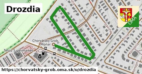 ilustrácia k Drozdia, Chorvátsky Grob - 0,84km