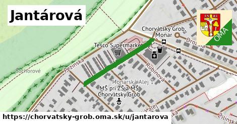 ilustrácia k Jantárová, Chorvátsky Grob - 266m