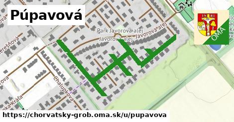 ilustrácia k Púpavová, Chorvátsky Grob - 634m