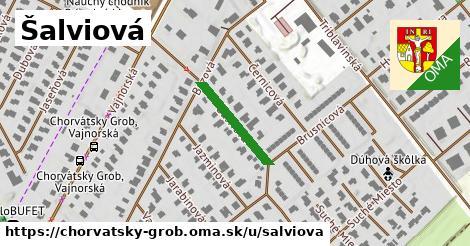 ilustrácia k Šalviová, Chorvátsky Grob - 173m