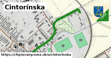 ilustrácia k Cintorínska, Chynorany - 505m