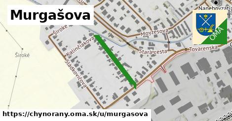 ilustrácia k Murgašova, Chynorany - 207m