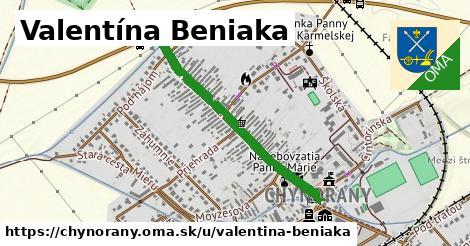 ilustrácia k Valentína Beniaka, Chynorany - 0,75km