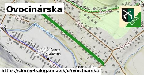 ilustrácia k Ovocinárska, Čierny Balog - 425m