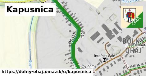 ilustrácia k Kapusnica, Dolný Ohaj - 492m