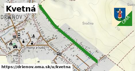ilustrácia k Kvetná, Drienov - 0,89km