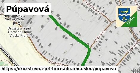ilustrácia k Púpavová, Družstevná pri Hornáde - 462m