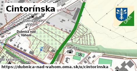 ilustračný obrázok k Cintorínska, Dubnica nad Váhom