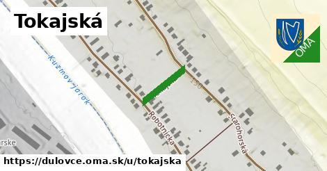 ilustrácia k Tokajská, Dulovce - 123m