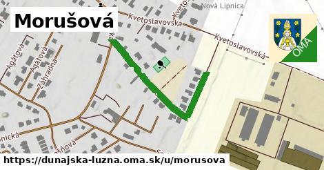 ilustrácia k Morušová, Dunajská Lužná - 367m