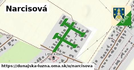 ilustrácia k Narcisová, Dunajská Lužná - 589m