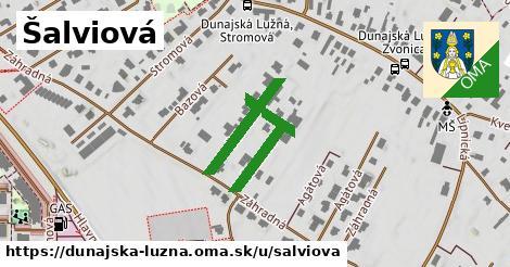 ilustrácia k Šalviová, Dunajská Lužná - 177m