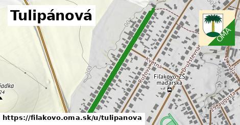 ilustrácia k Tulipánová, Fiľakovo - 379m