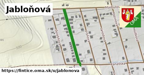 ilustrácia k Jabloňová, Fintice - 306m