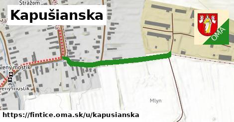 ilustrácia k Kapušianska, Fintice - 348m