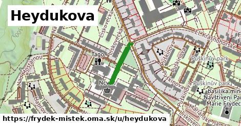 ilustrácia k Heydukova, Frýdek-Místek - 138m