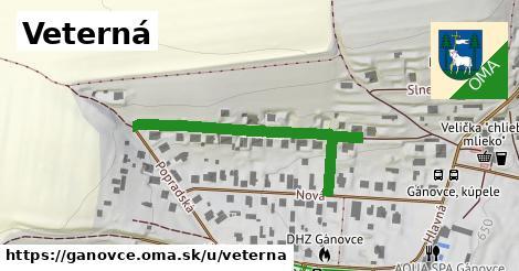 ilustrácia k Veterná, Gánovce - 412m