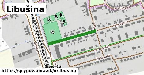 ilustrácia k Libušina, Grygov - 252m