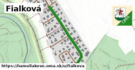 ilustrácia k Fialková, Hamuliakovo - 386m