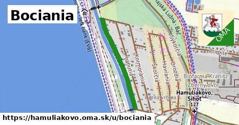 ilustrácia k Bociania, Hamuliakovo - 610m