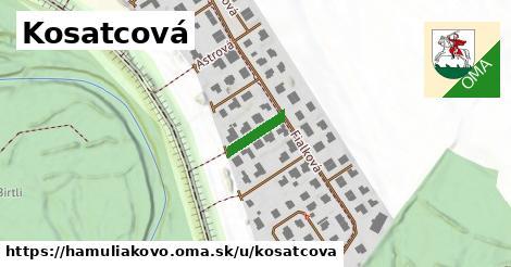 ilustrácia k Kosatcová, Hamuliakovo - 100m