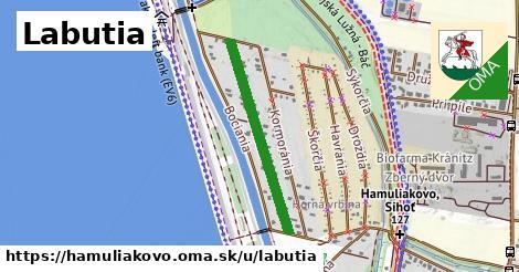 ilustrácia k Labutia, Hamuliakovo - 586m