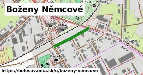 ilustrácia k Boženy Němcové, Holešov - 205m