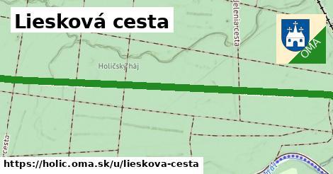 ilustrácia k Liesková cesta, Holíč - 1,78km