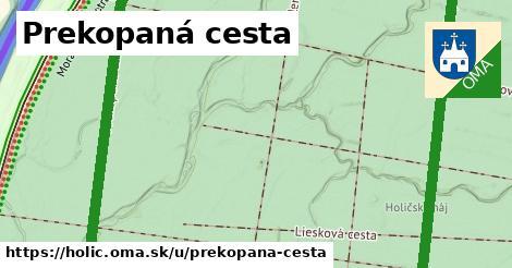 ilustrácia k Prekopaná cesta, Holíč - 3,5km