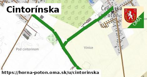 ilustrácia k Cintorínska, Horná Potôň - 650m