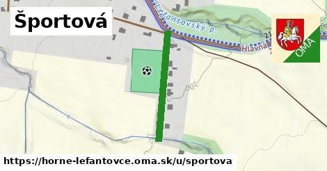 ilustrácia k Športová, Horné Lefantovce - 256m