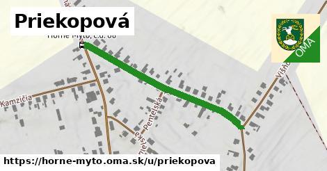 ilustrácia k Priekopová, Horné Mýto - 519m