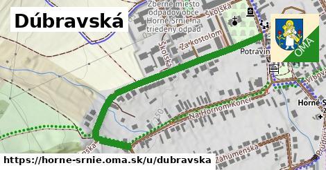 ilustrácia k Dúbravská, Horné Srnie - 551m