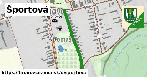 ilustrácia k Športová, Hronovce - 323m