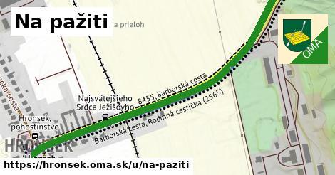 ilustrácia k Na pažiti, Hronsek - 0,73km