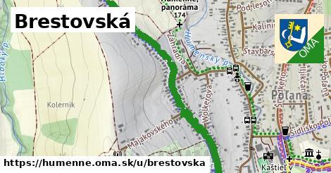 ilustrácia k Brestovská, Humenné - 1,55km