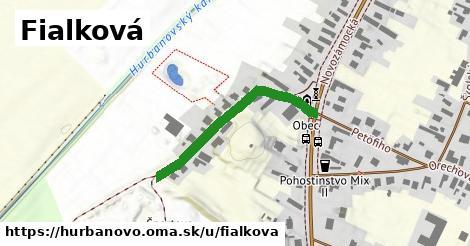 ilustrácia k Fialková, Hurbanovo - 309m