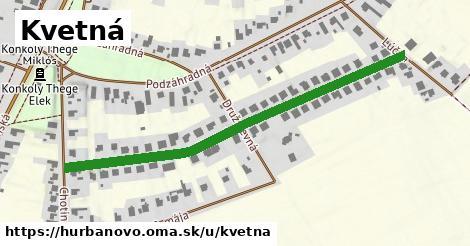 ilustrácia k Kvetná, Hurbanovo - 584m