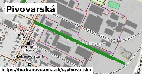 ilustrácia k Pivovarská, Hurbanovo - 650m