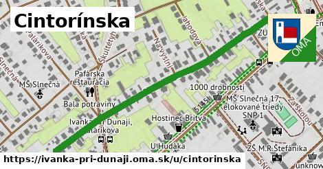 ilustrácia k Cintorínska, Ivanka pri Dunaji - 596m